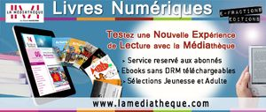 EbooksWeb(1)